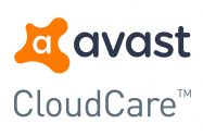 Order Avast business care for £30.00 Per Year.